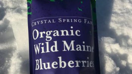Organic Wild Maine Blueberries