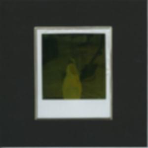 the death of the polaroid - 4.jpg