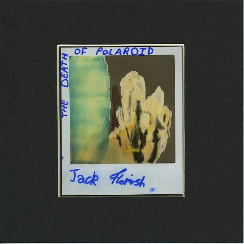 the death of the polaroid - 1.jpg