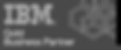 IBM%2BGold%2BBusiness%2BPartner_edited.p