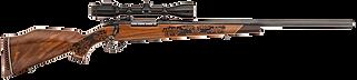 Firearms-85.png