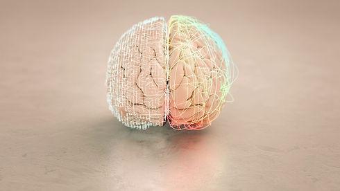 Brain website_edited.jpg