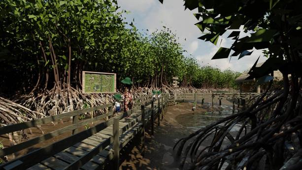 Mangrove Forest 6.jpg