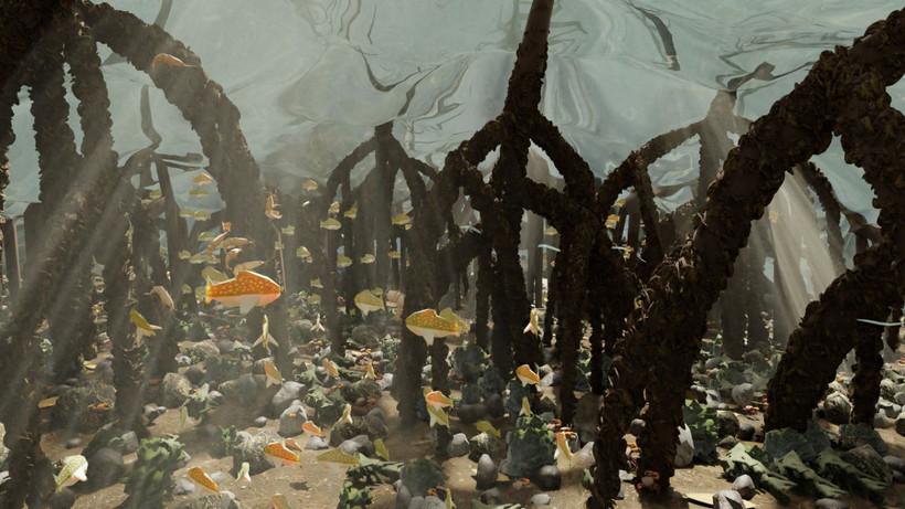 Mangrove Forest 7.jpg