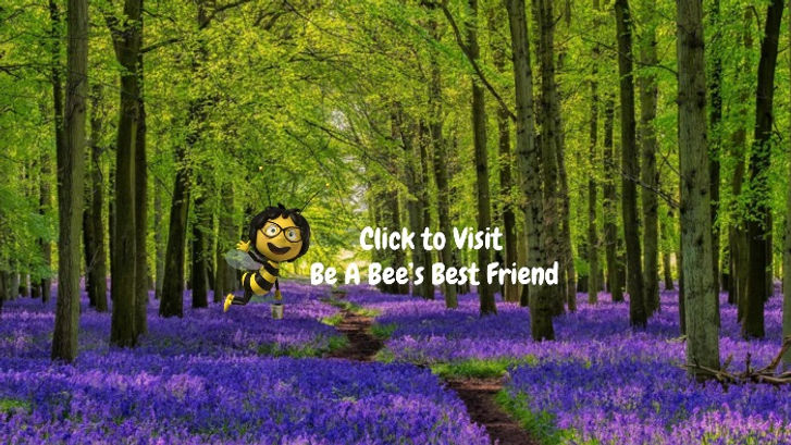Bee%20ClickToVisit_edited.jpg