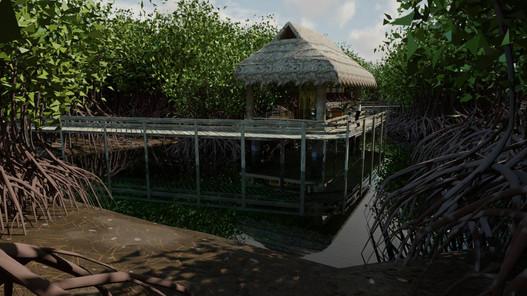 Mangrov Forest 14.jpg