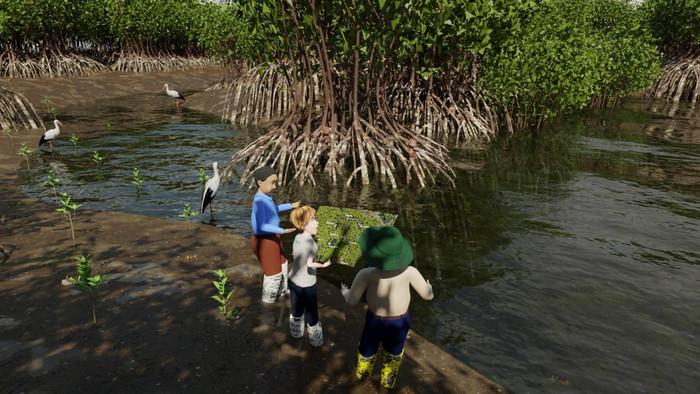 Mangrove Forest 1.jpg