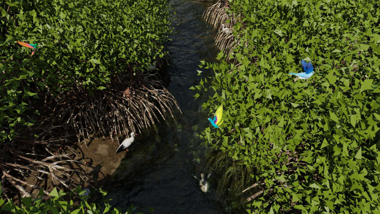 Mangrove Forest 11.jpg