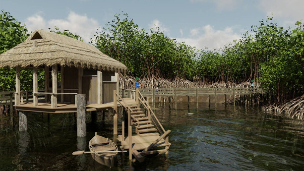 Mangrove Forests 4.jpg