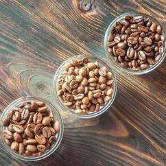COFFEE FRESH & ROASTED
