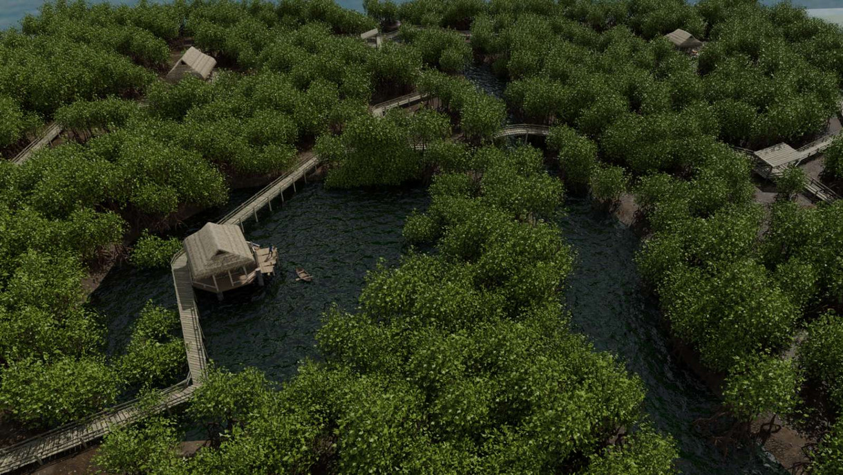 Mangrove Forests 24.jpg