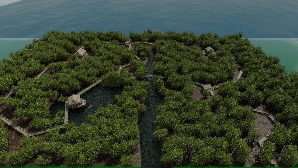 Mangrove Forests 23.jpg
