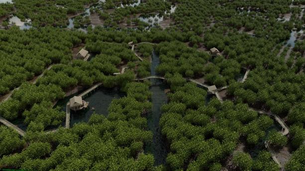 Mangrove Forests 21.jpg