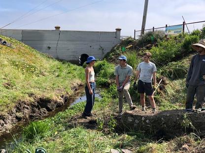 Riparian Corridor Restoration Project