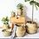 Thumbnail: Seagrass Baskets