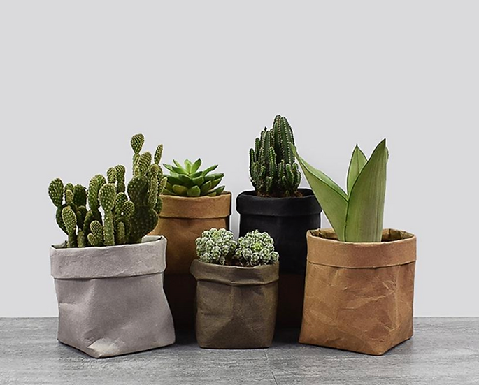 Recycled Paper Planters