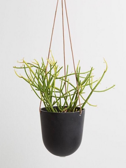 Hanging Black Pot