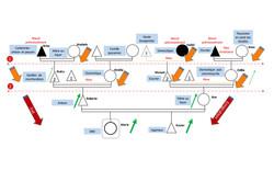 Génosociogramme