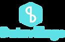 datavillage logo.png