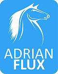 Adrian Flux Logo Blue - 2012.jpg