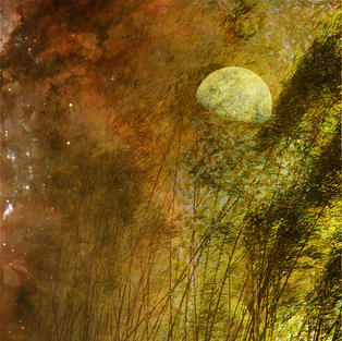 """""""Moon Hare and the Universe"""""""