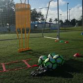 Pro-Goalkeeper training, off-season prep
