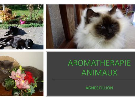 Reflex Aromathérapie pour animaux