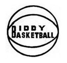biddy-basketball-87337077.jpg