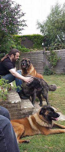 Estrela Puppy Champion Breeder