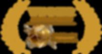Accolade-Merit-logo-Gold copy.png