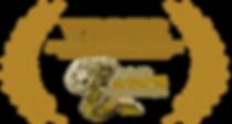 BEST-SHORTS-REcognition-logo-gold copy.p