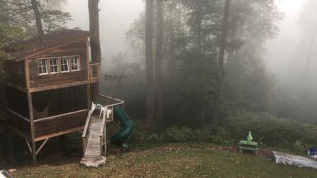 Richmond Fog