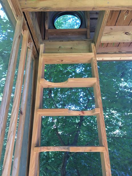 Trailside Treehouse Ladder