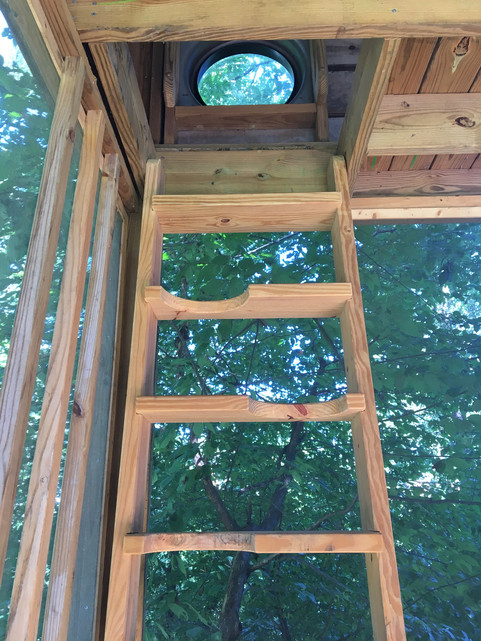 Trailside Treehouse Ladder