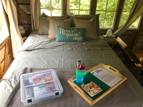 Never Grow Up by Staying at the Trailside Treehouse