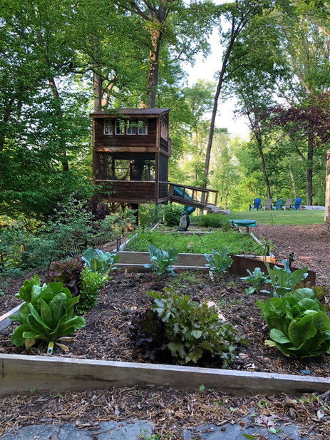 Trailside Treehouse Garden