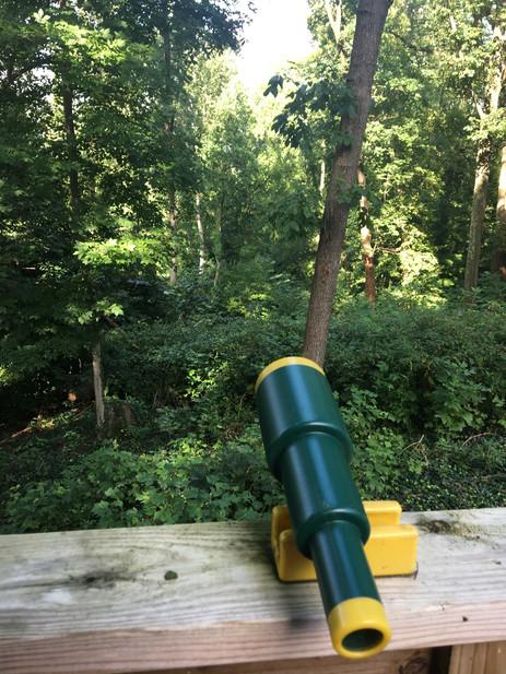 Explore Your Treehouse Surroundings