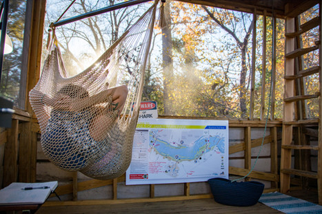 Relax in the treehouse hammocks while you plan your next adventure