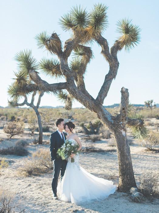 Kevin & Ting Engagement(Pre-Wedding) Los Angeles 美式婚禮婚紗