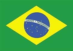 Brazil flag.jpeg