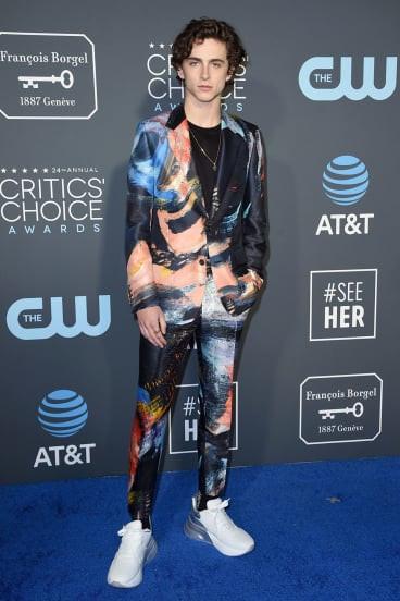 Timothee Chalamet at the 2019 Critics Choice Awards