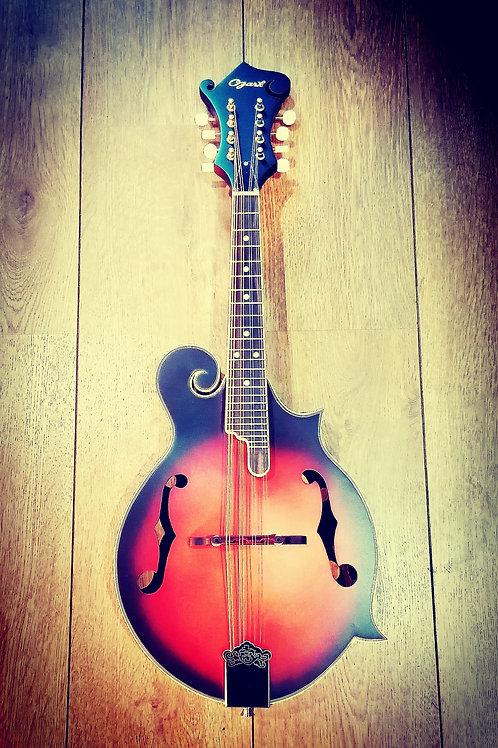Ozark f hole Bluegrass Mandolin