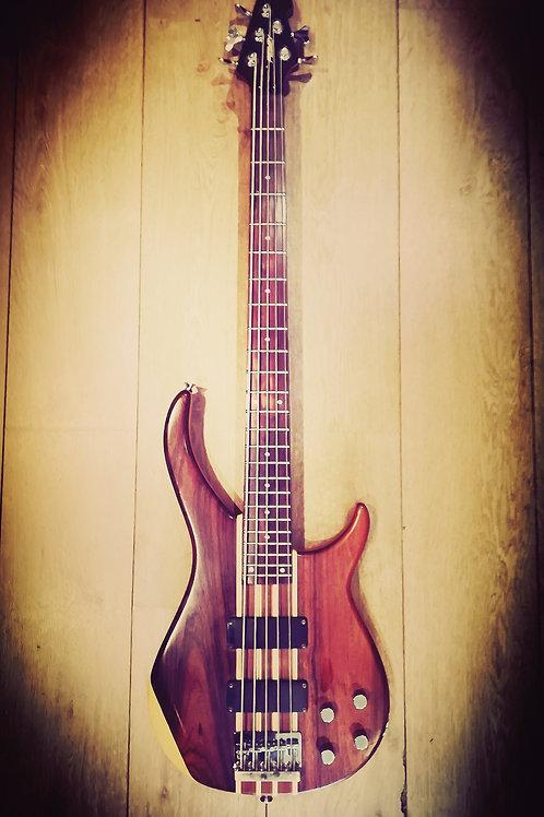 Peavey Zephyr 5 string