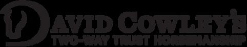 DavidCowley_Logo_DName_edited.png