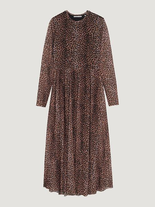 Catwalk Junkie Hazel Dress