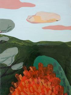 Vermilion Bush + Pink Clouds