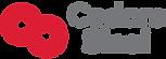 CS-Logo-RGB.png