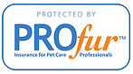 Hearts and Hounds | Vancouver, British Columbia | Protected by ProFur Insurance for Pet Care Professionals