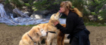 Hearts and Hounds | Vancouver, British Columbia | Accredited Dog Trainer Alison Solskis