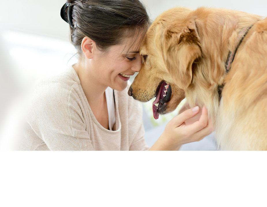 Golden Retriever & Owner Showing Affection